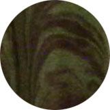 Vert Ripple